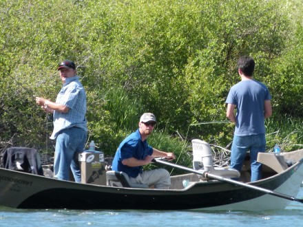 Experience a Fully Day of Fly Fishing!